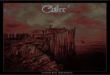 Coltre - Under The Influence