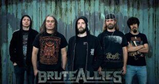 Bruteallies